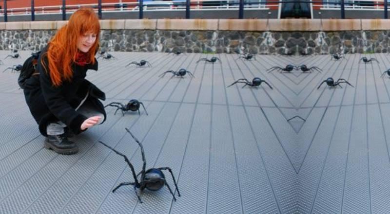 много пауков на улице