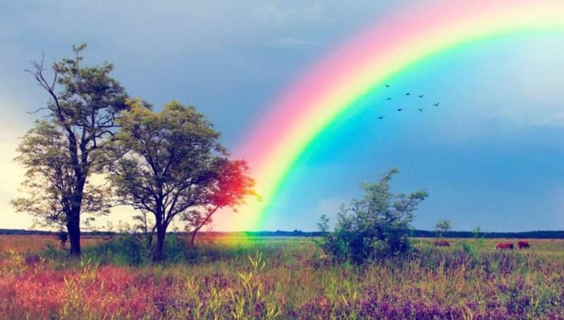 радуга на поле