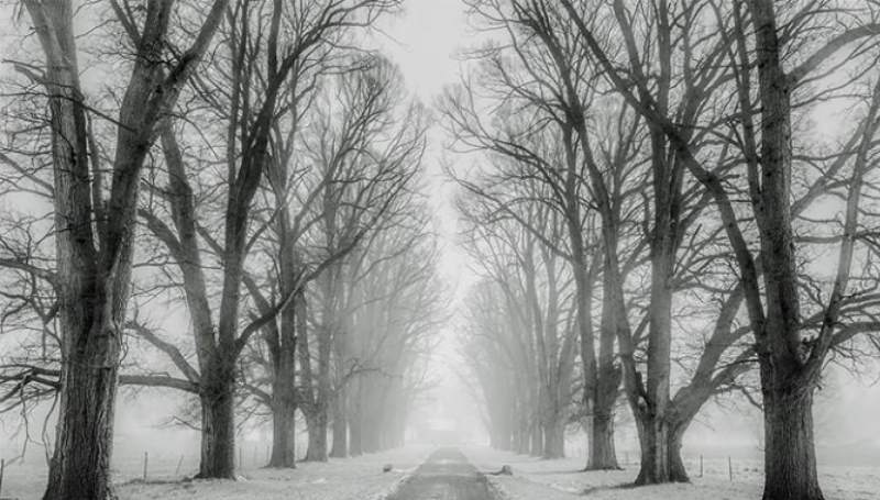 приснился снег, который блестит под солнечными лучами