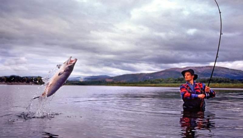 при ловле рыбы вы используете крючки