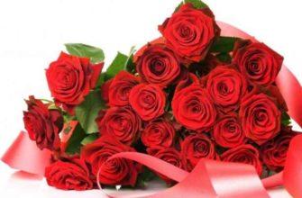 Розы в течение лета снятся к благополучным событиям