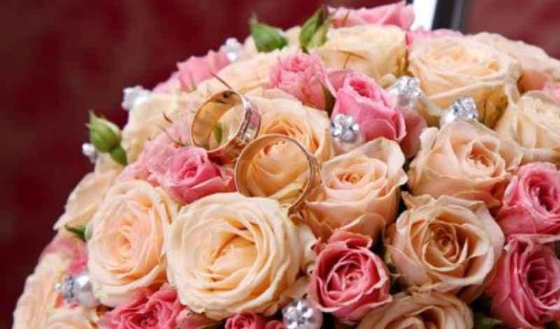 Увидеть большое количество роз